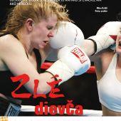 časopis Dimenzie ročník 2013