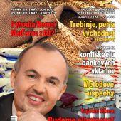 obálka časopis Dimenzie r. 2013