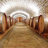 vinárska firma Tokaj Viničky