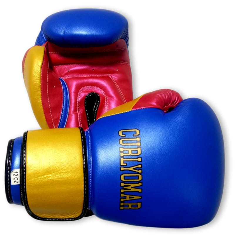 Boxxerworld Gloves Classic (Multi Colour) Wassim