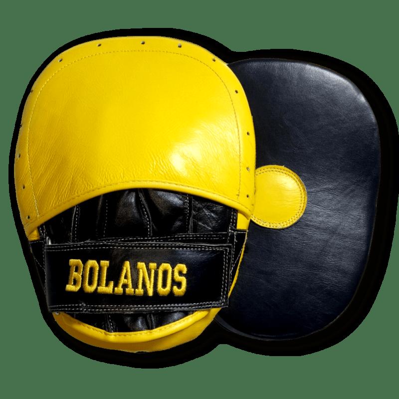 Boxxerworld Focus Pad (ioannis)