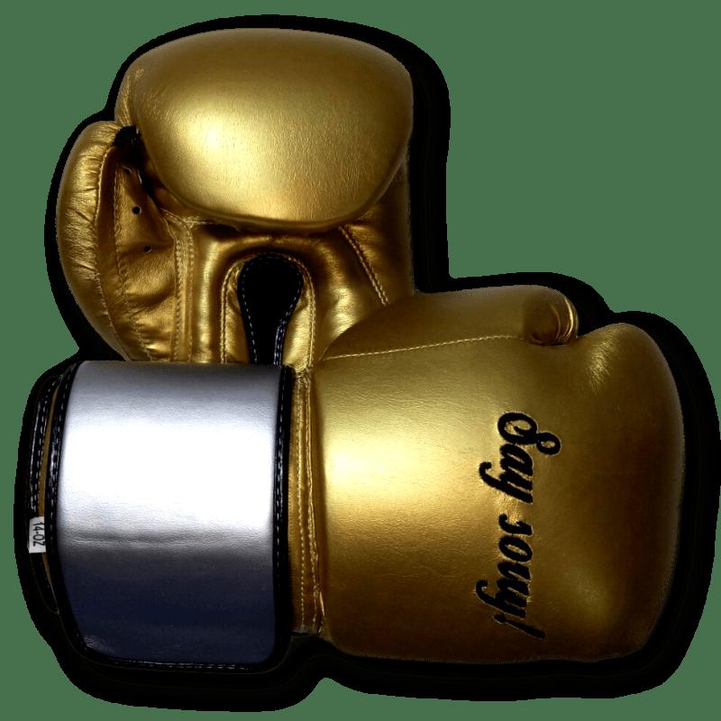 Boxxerworld GLOVES EASY (2 colour) (Lea)