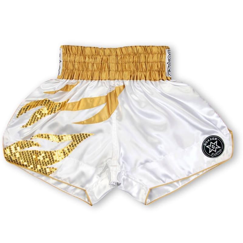 Boxxerworld Roy Jones MTS Kit