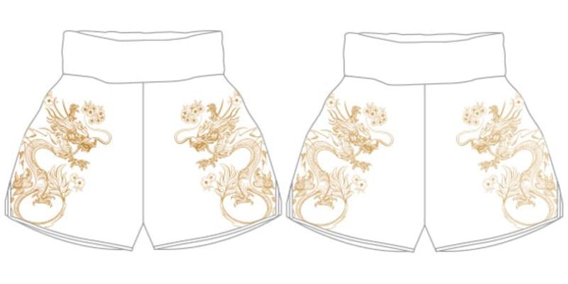 DRAGON MTS | Custom Muay Thai Shorts | Boxxerworld