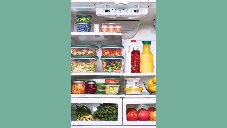WEB EFL Antimicrobial Forest Green Lifestyle Refrigerator