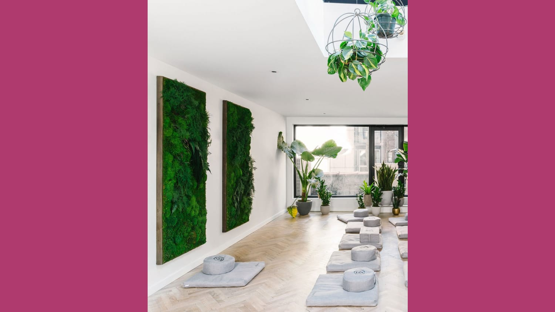 WEB MNDFL meditation studio in NYC