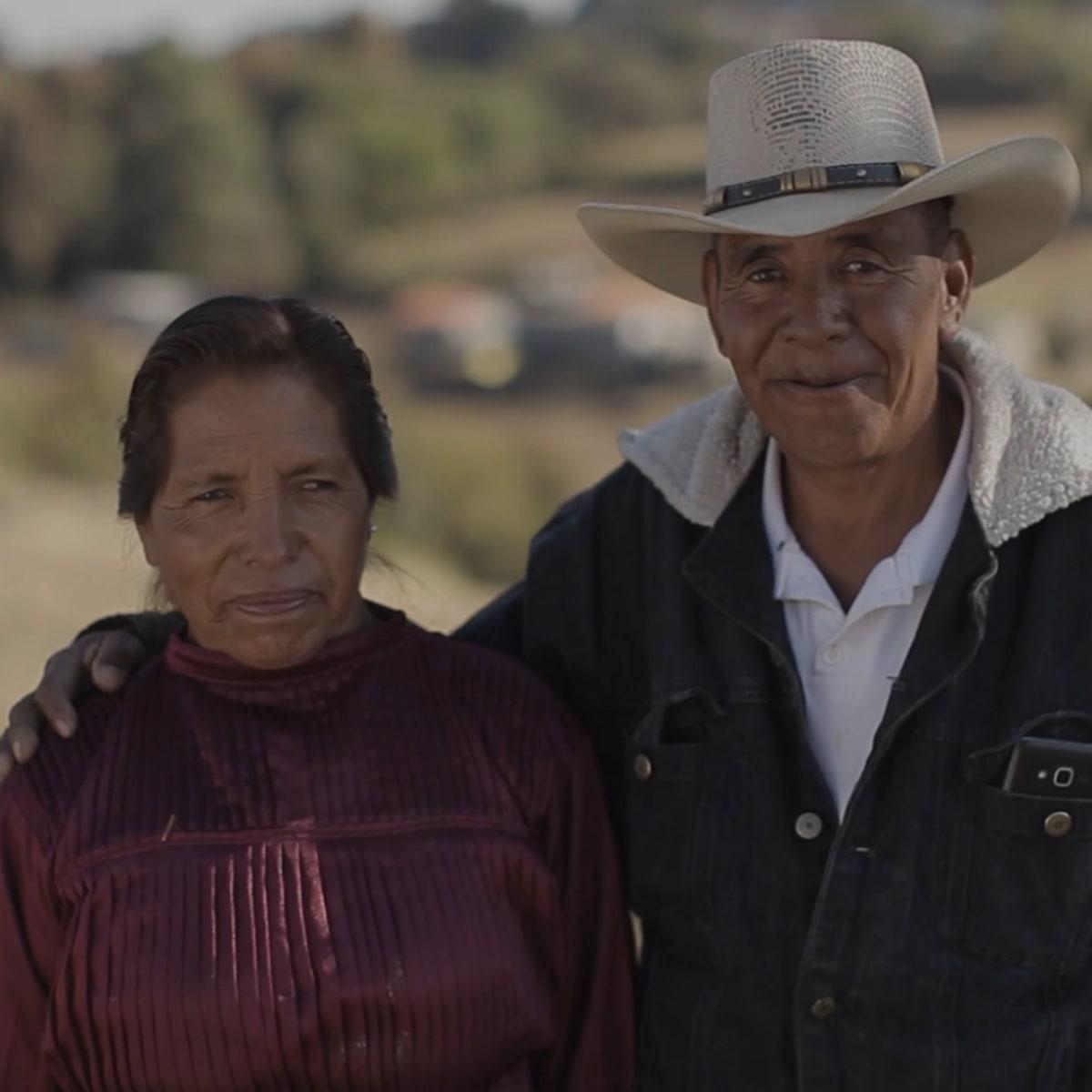 Mexico Work Indigos