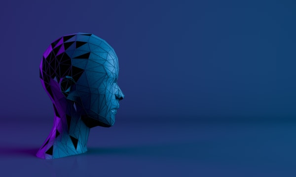 sculpture of human head