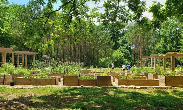 HERO Atlanta Food Forest