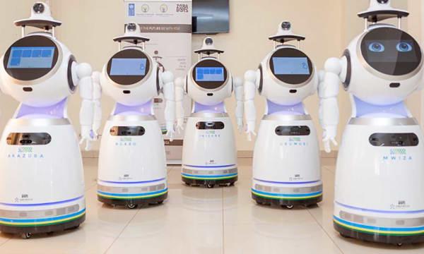 HERO Zora Robots