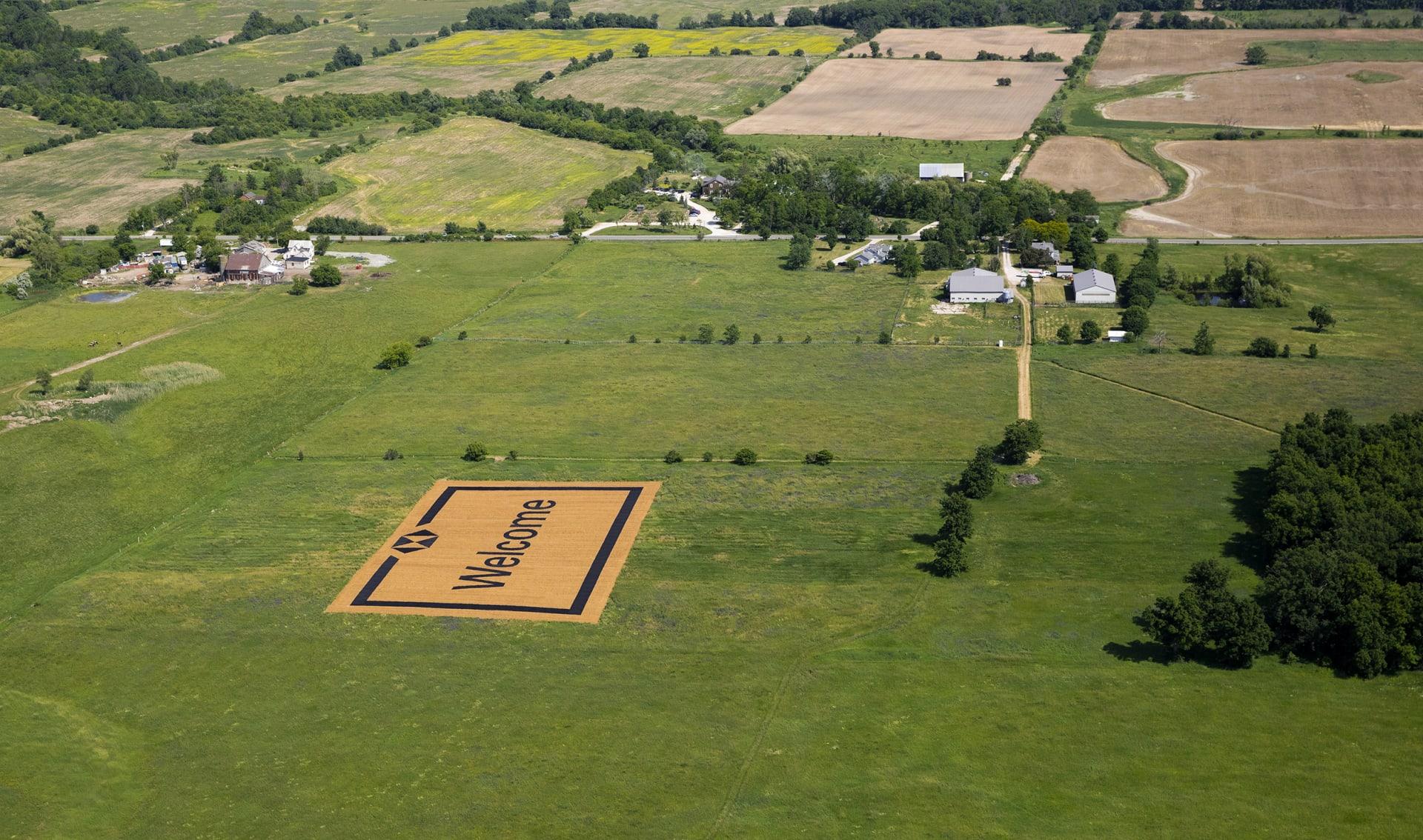 HSBC Welcome Mat placed on green grassland
