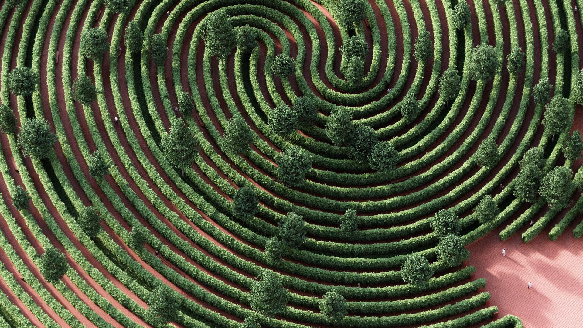 F100 2021 Hero Image Maze