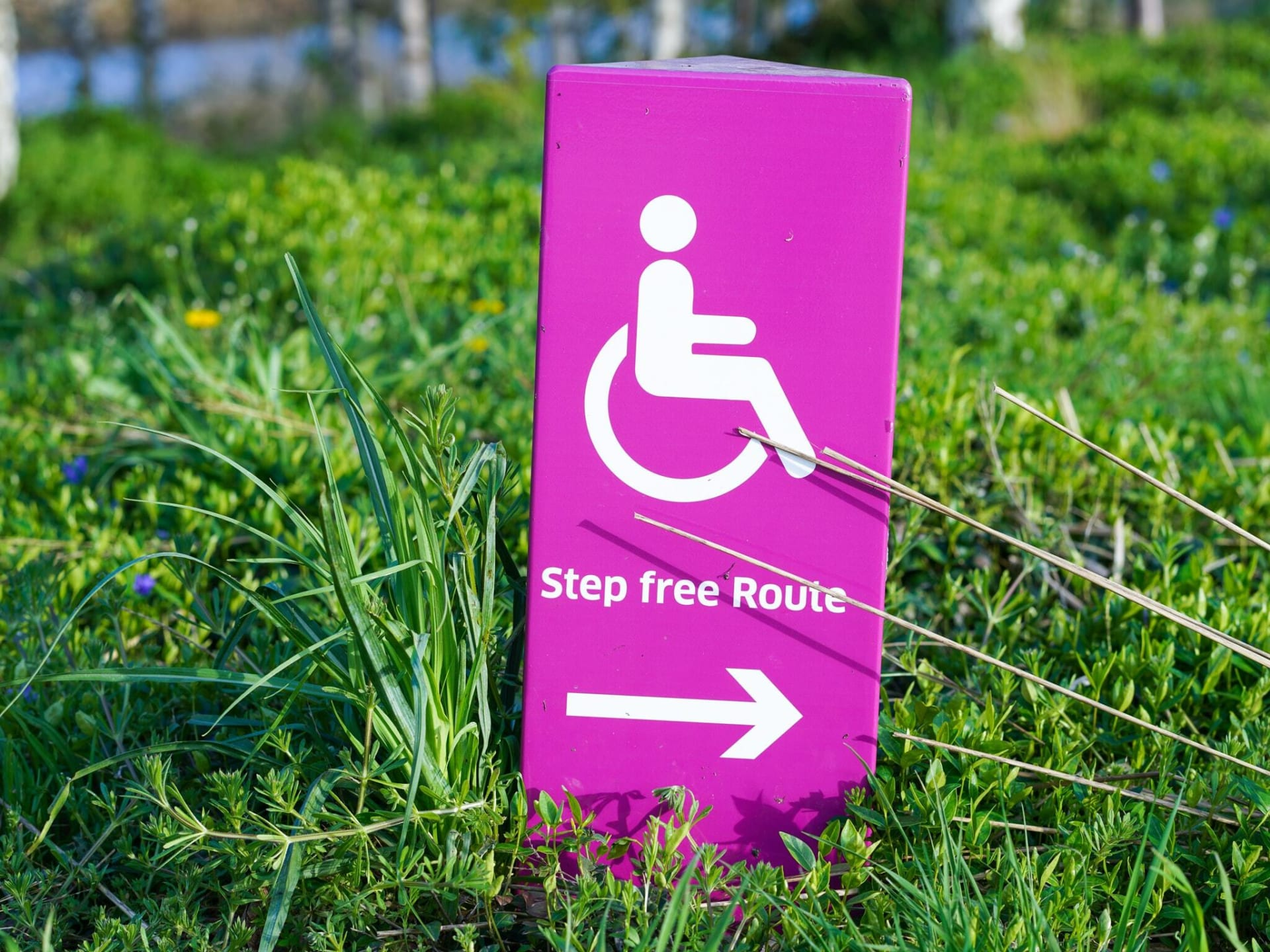 Accessibility visual