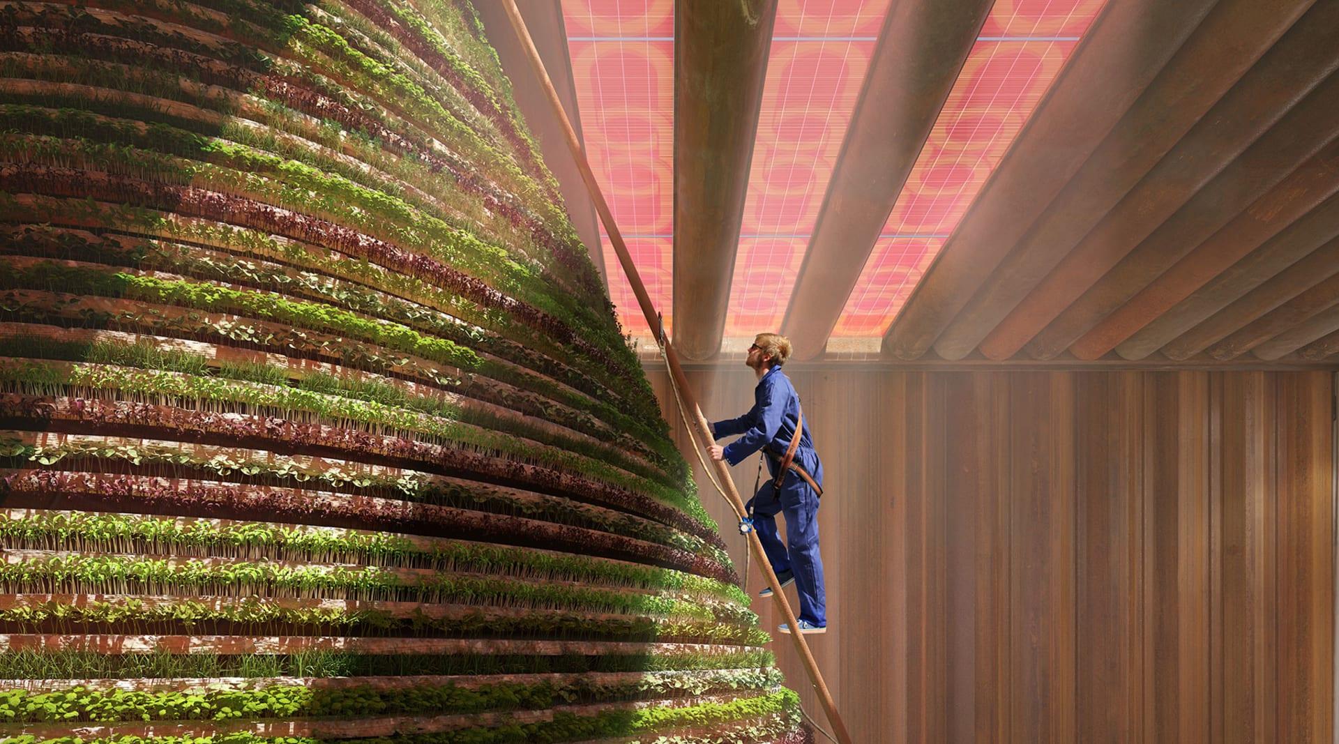 WEB Dutch pavilion harvesting V8 Architects