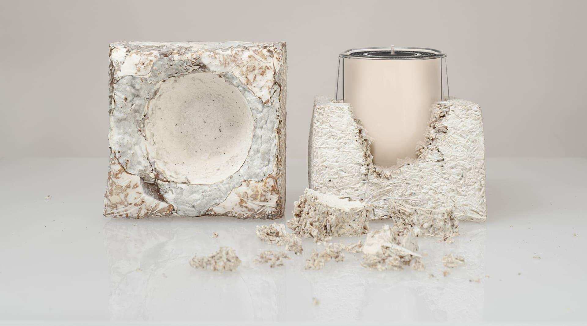 WEB Haeckels Mycelium Seed Paper Packaging