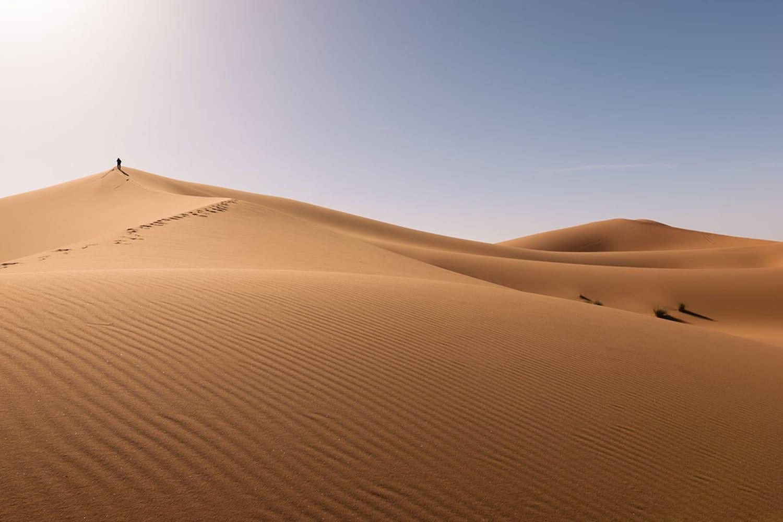 WEB Erg Chebbi Desert Sahara 585300509