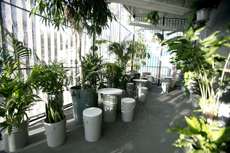 WEB The Goods Mart Jungle Garden credit Wyatt Conlon