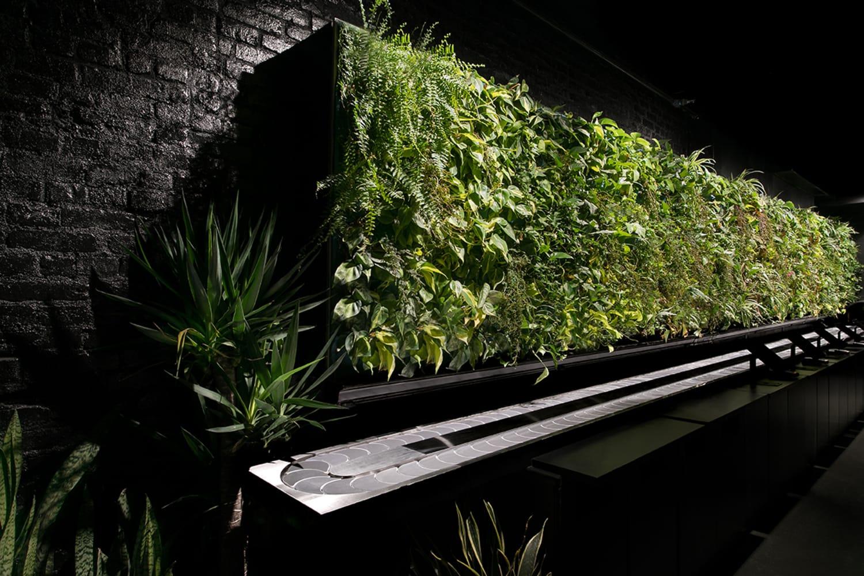 JWT Nap York green wall