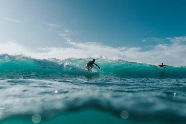 WEB Surfers