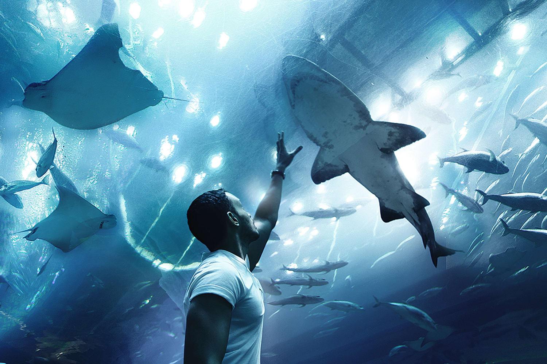 JWT NEAQ 2069 Envisioning the Future Aquarium Experience