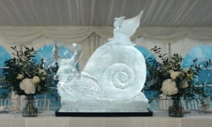 VW Crafter Ice Snail