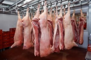 Butchers Van Conversions
