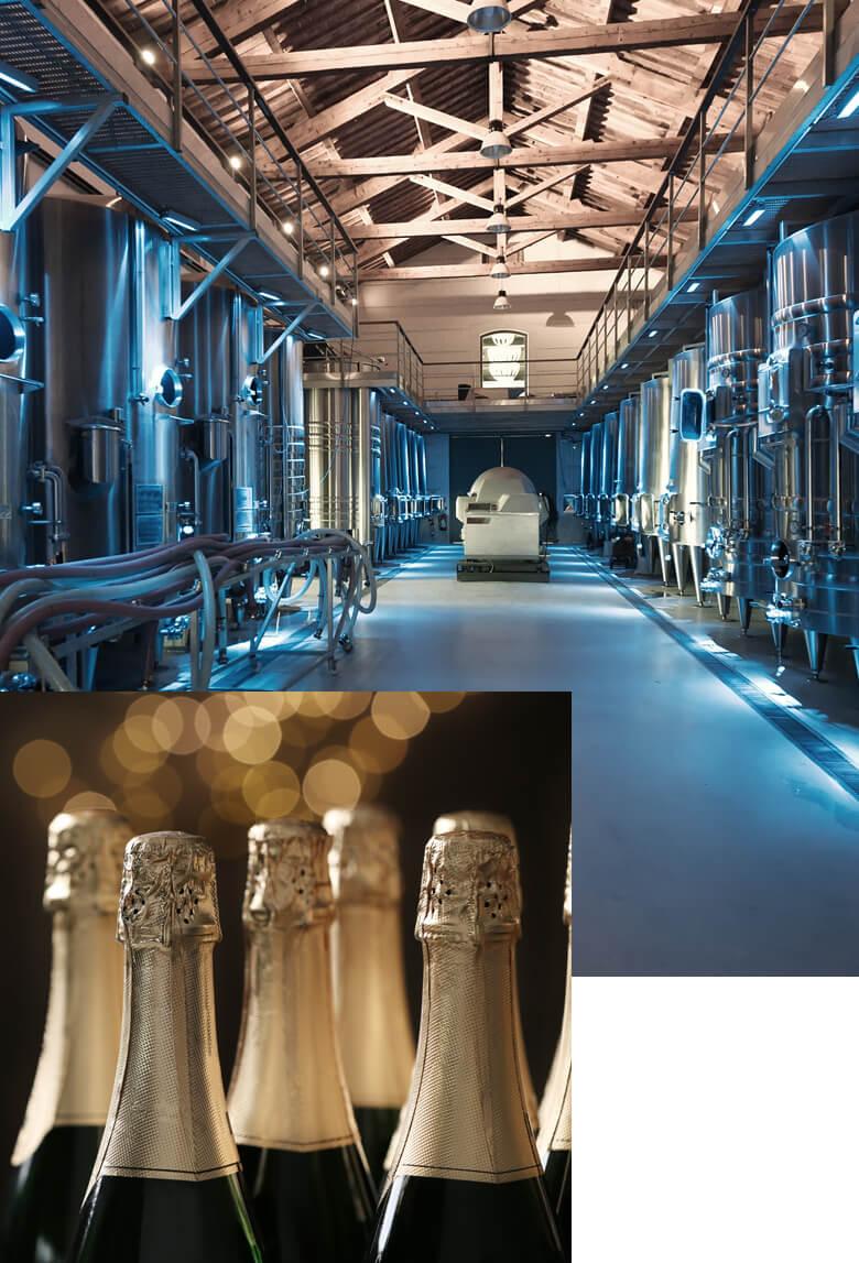 Sistemi di refrigerazione per l'industria enologica - BRIF - Sistemi di refrigerazione per l'industria enologica, casearia e alimentare