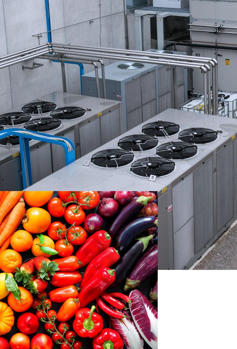 BRIF - Sistemi di refrigerazione per l'industria enologica, casearia e alimentare