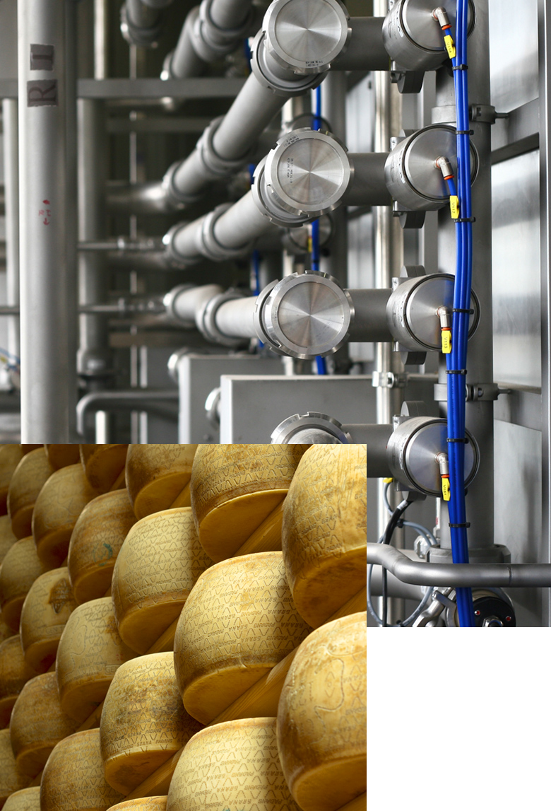 Sistemi di refrigerazione per il settore caseario - BRIF - Sistemi di refrigerazione per l'industria enologica, casearia e alimentare