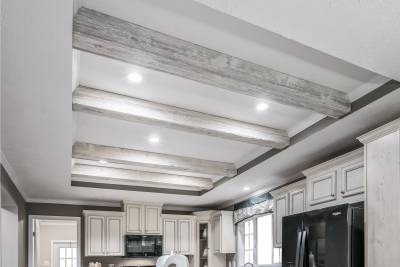 Kitchen Ceiling