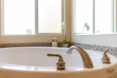 Master Bath Tub 2