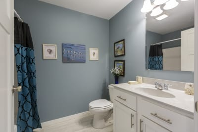 New Era Amherst 3.0 bathroom