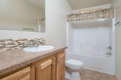 American Freedom 3263 bathroom