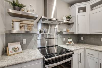 Genesis Homes - Model 11 stove