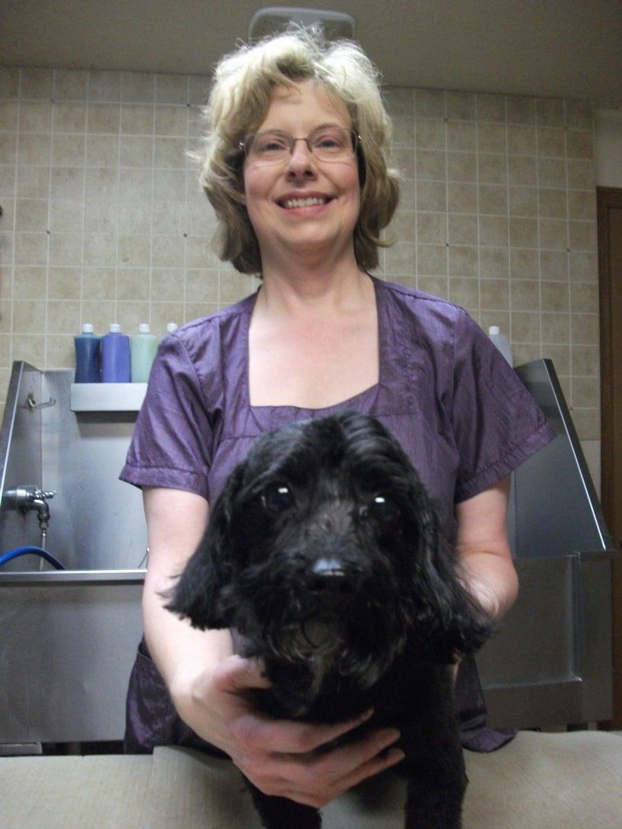 doublej-dog-grooming-041