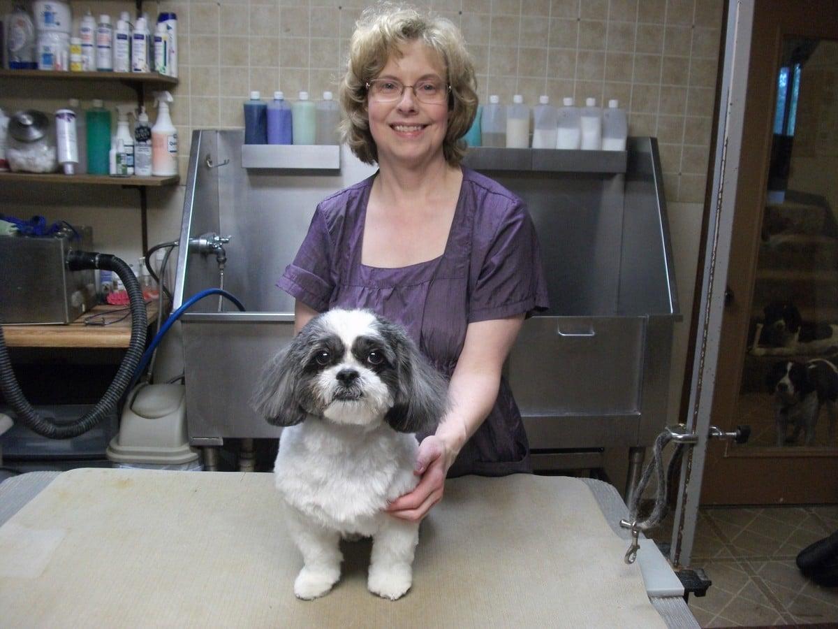 doublej-dog-grooming-047