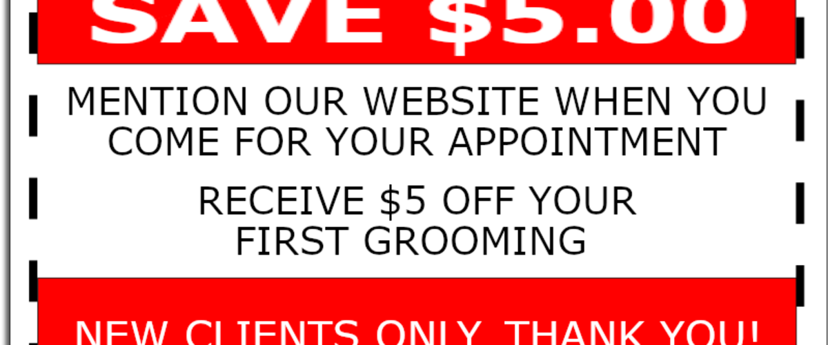 SPECIAL OFFER FOR NEW CUSTOMERS