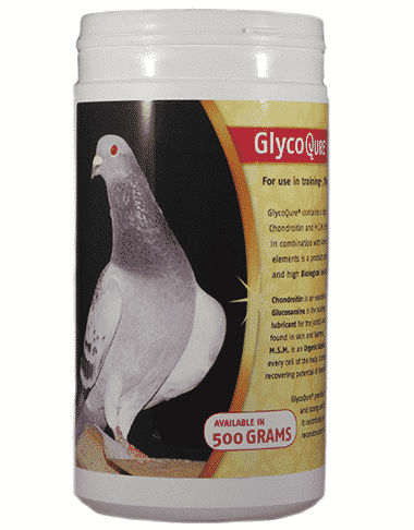 GlycoQure® Pigeon