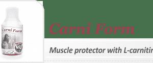 Carni Form