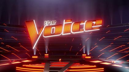 Участники «Голоса» устроили «самый сексуальный» поединок на сцене