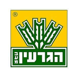הגרעין - לוגו