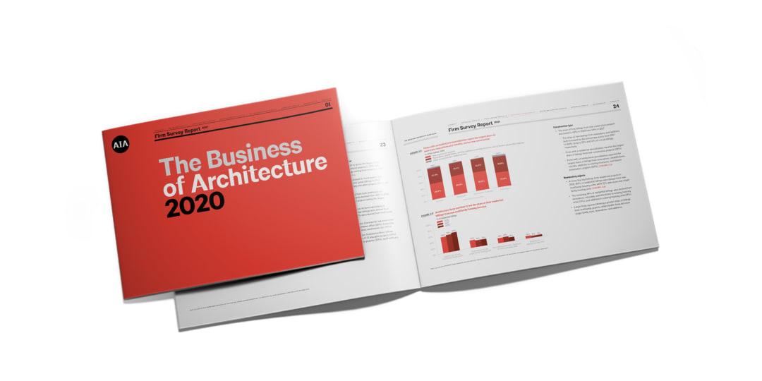 Firm Survey 2020