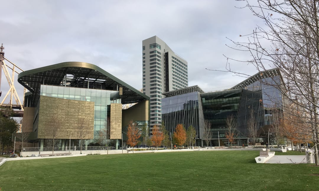 The House at Cornell Tech - Rockwool partner content