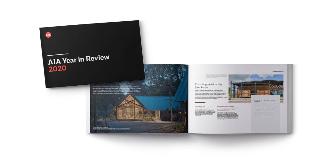 2020 Annual Report Booklet Snapshot