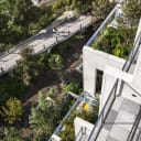 Green roofs and terraces utilize the same planting palette as Brooklyn Bridge Park, creating a connection between the building and the natural environment.