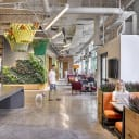 Green wall and planters provides indoor access to natural plant life.