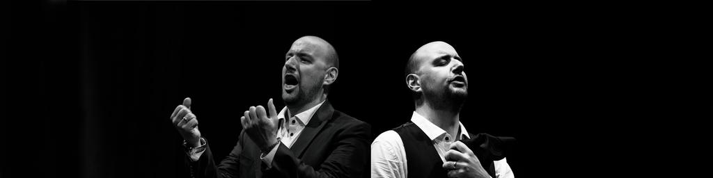 Matteo Maria Ferretti, Bass-baritone