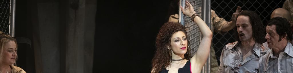 Julia Mintzer, Mezzo-soprano, Stage director