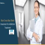 Blue Cross Blue Shield Insurance For Addiction Treatment