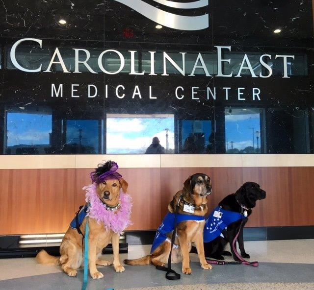 Therapy Dogs | CarolinaEast Volunteer Program | New Bern, NC